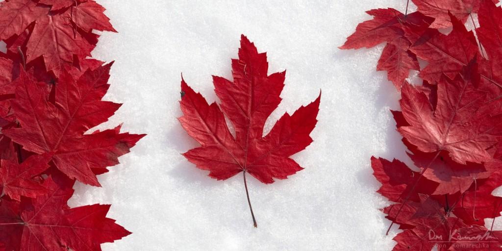 Chương trình bảo lãnh ông bà cha mẹ của Canada có mở lại trong năm 2017 không?