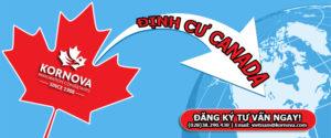 Top 5 Cách Định Cư Canada Có Tỷ Lệ Thành Công Cao Nhất Năm 2020