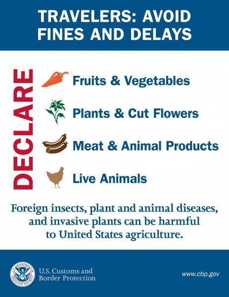 Danh Mục Những Thứ Bị Cấm Mang Vào Mỹ