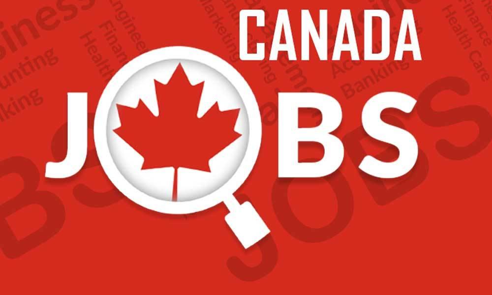 Dự Báo Nhu Cầu Việc Làm Ngành Công Nghệ Cao Ở Canada Trong Năm 2020
