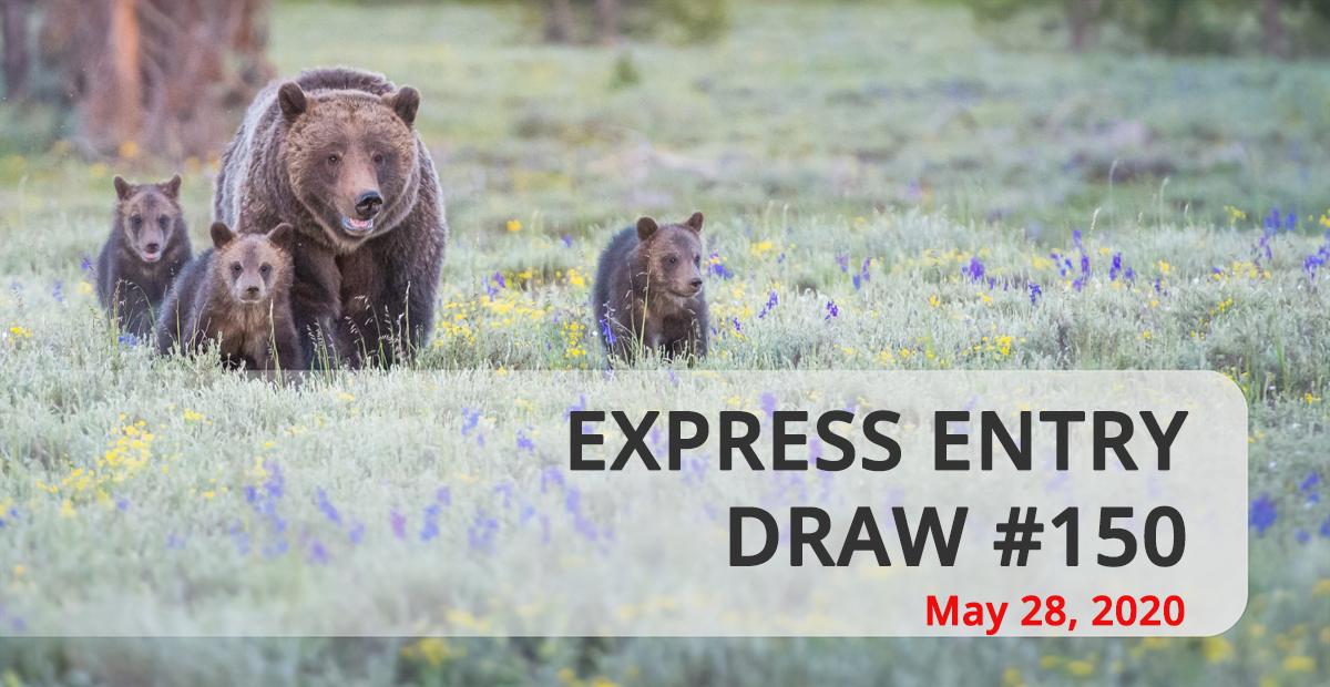 Đợt Rút Thăm Express Entry Ngày 27/05 Và 28/05/2020 Mời 3900 Ứng Viên