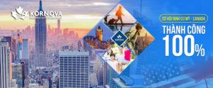 Thông Báo Mới Của Chính Phủ Mỹ Đối Với Du Học Sinh Quốc Tế Trong Học Kỳ Mùa Thu 2020