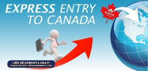 Canada Tiếp Tục Phát Hành Thư Mời Cho Nhóm Kinh Nghiệm Canada